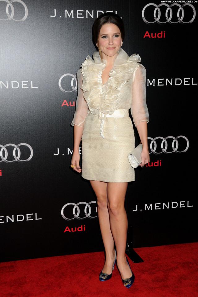 Sophia Bush Golden Globe Awards Beautiful Los Angeles Awards Babe